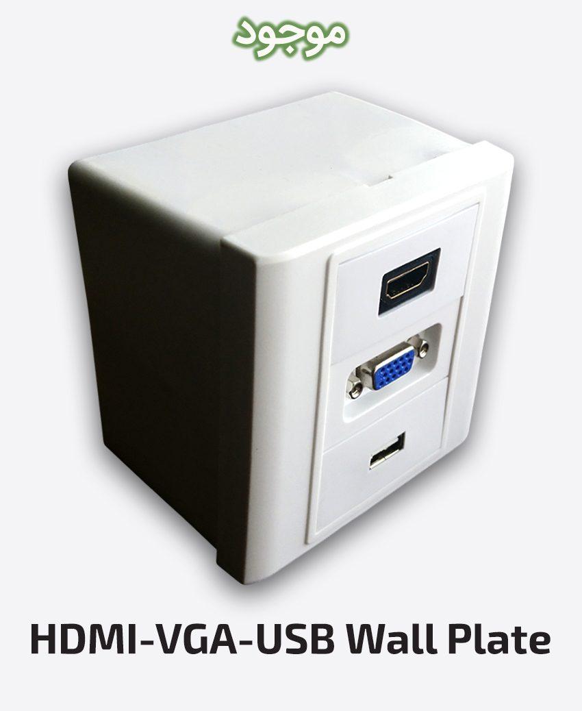 HDMI-VGA-USB Wall Plate